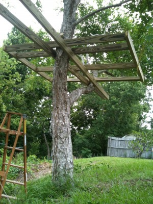 treehouse platform plans