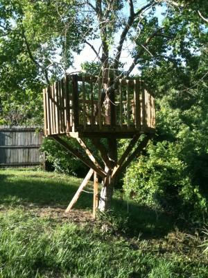 26-leucht_treehouse