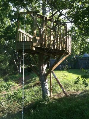 28-leucht_treehouse