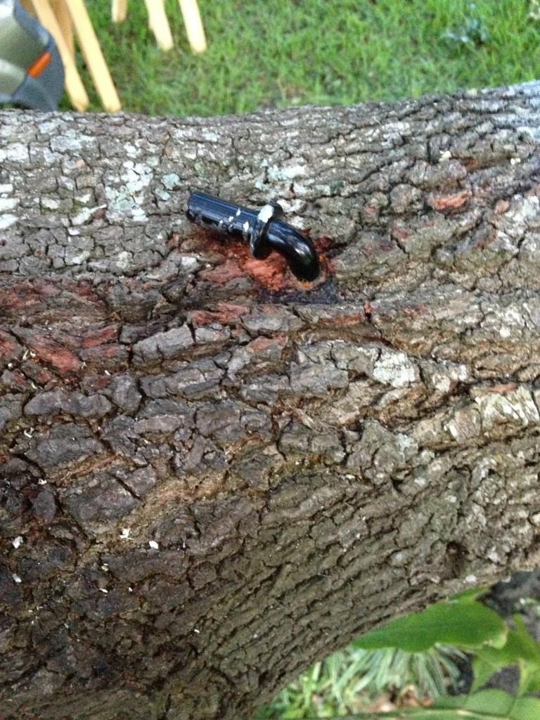 tree-deck-15