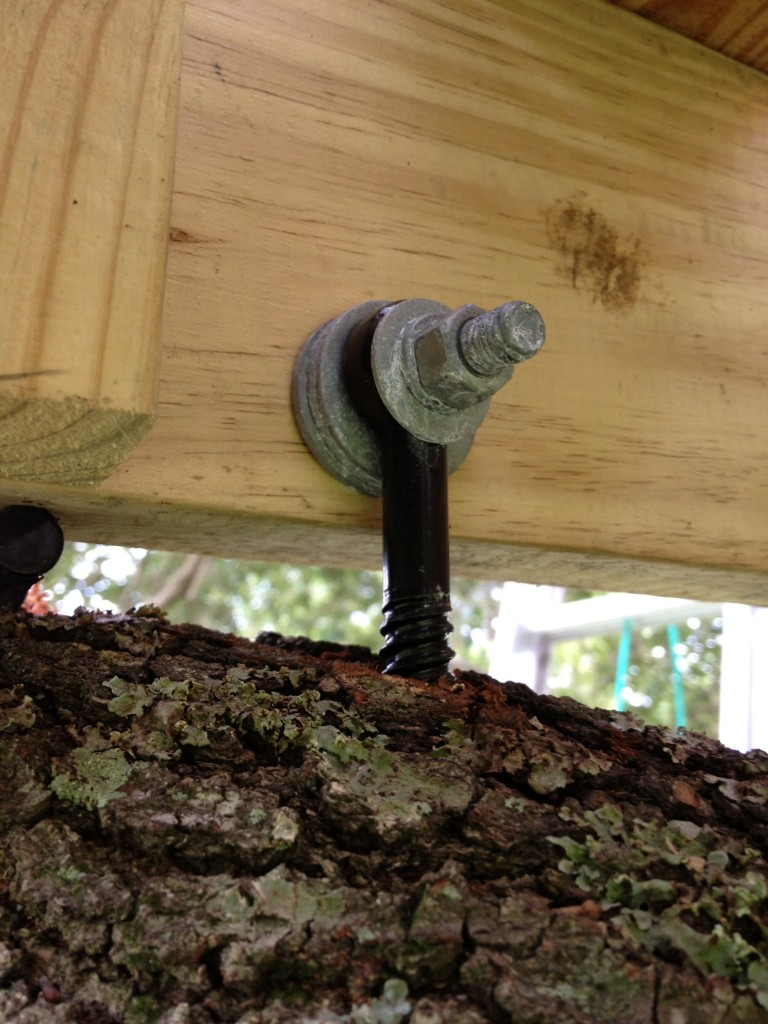 tree-deck-17