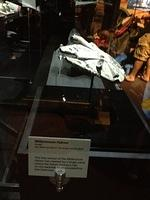 06 - small millenium falcon model